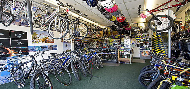 Online Bicycle Shops Buy Bikes For Less